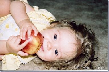 Baby Bear 2006