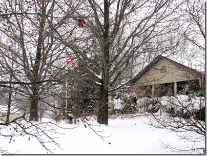 snow01-23-11c