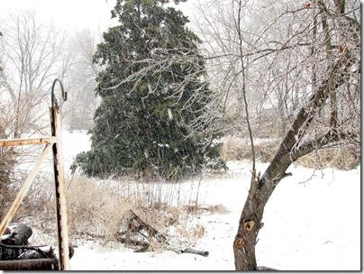 Snow02-01-11b
