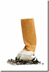 cigarro - bagana