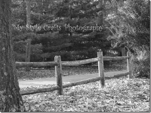 Fall Trail B&W - watermarked artfire