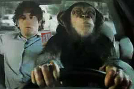 your monkey designated driver.