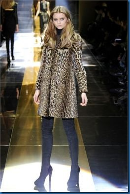 Gucci animalier photos_4