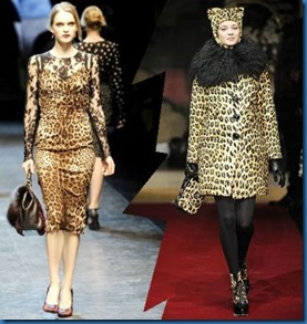 Gucci animalier photos