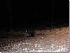 1.9.2010 SNOW! (45)