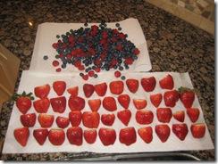 2.13.2010 Valentine's Day 001