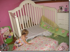 7.28.2010 Toddler Bed (3)