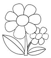 flores_46