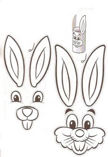 conejos 1