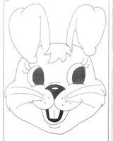 conejos (13)