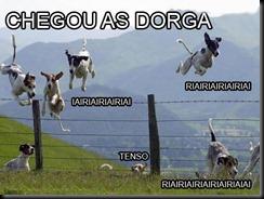 Dorgas1