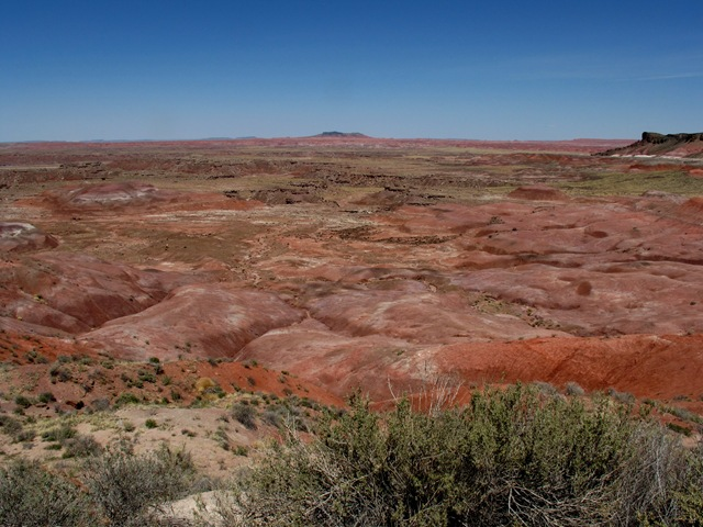 Petrified Forest National Park Painted Desert Lacey Point (2)