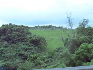沖縄自動車道から堤体下流側を望む(その3)