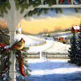 Christmas (4).jpg