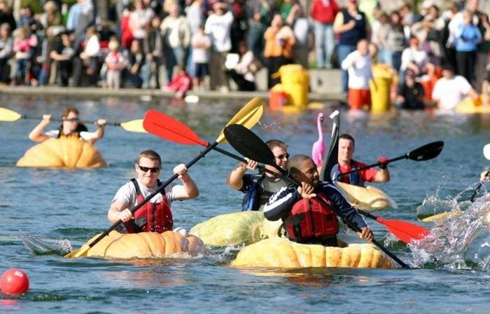 pumpkin-regatta (4)