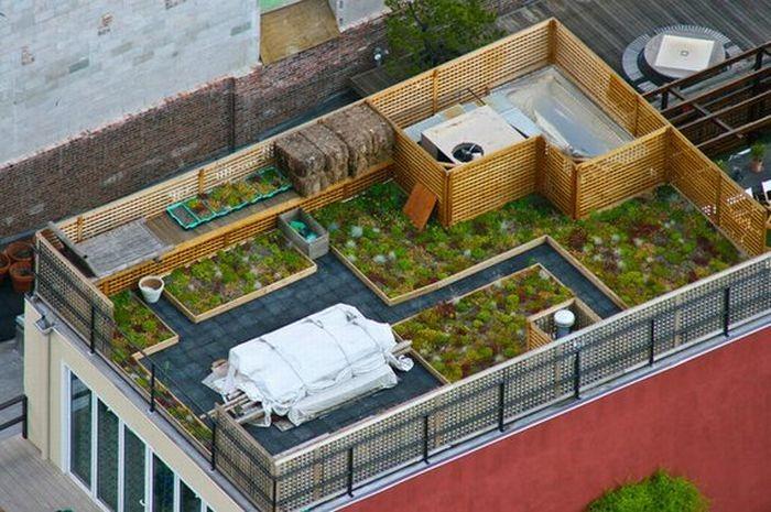 rooftops (1)