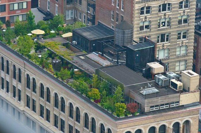 rooftops (5)