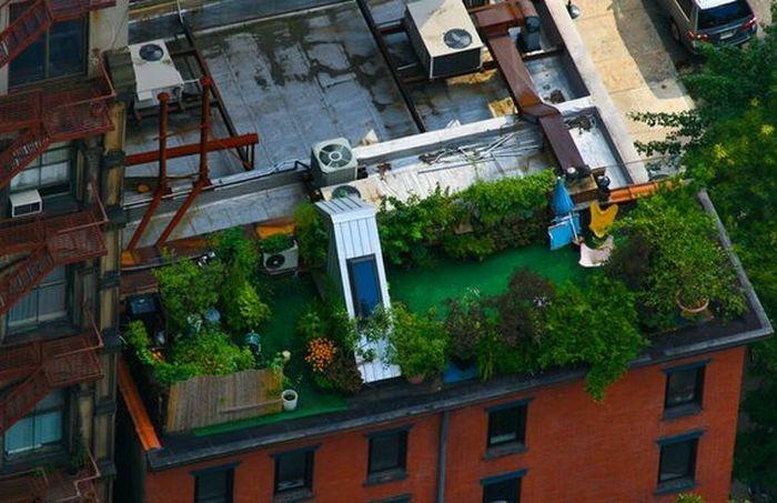 rooftops (12)