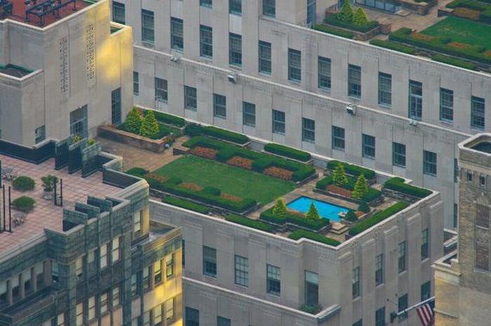 rooftops (17)