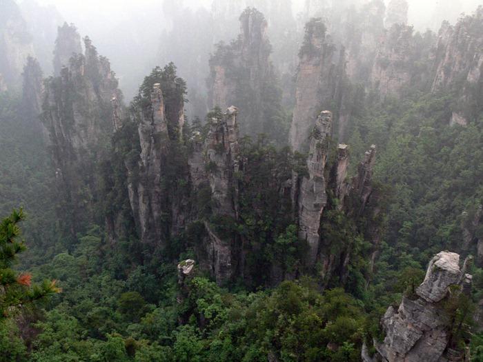 zhangjiajie (17)