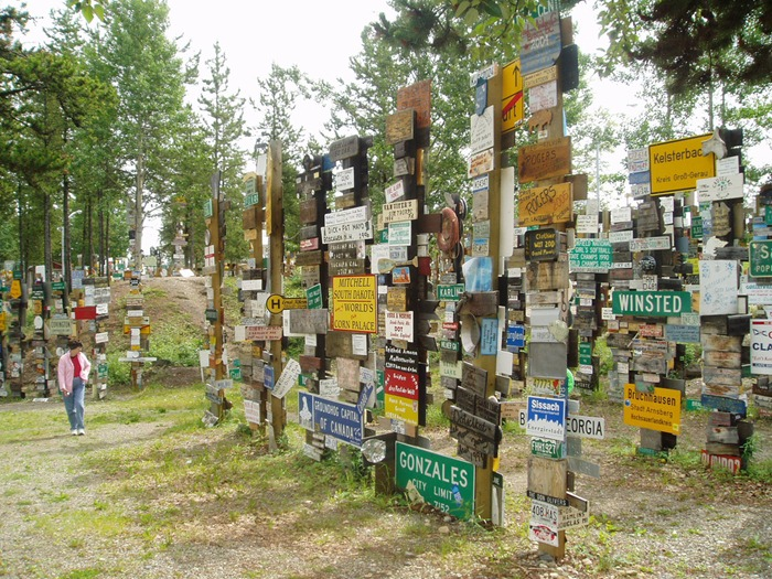 sign-post-forrest (5)