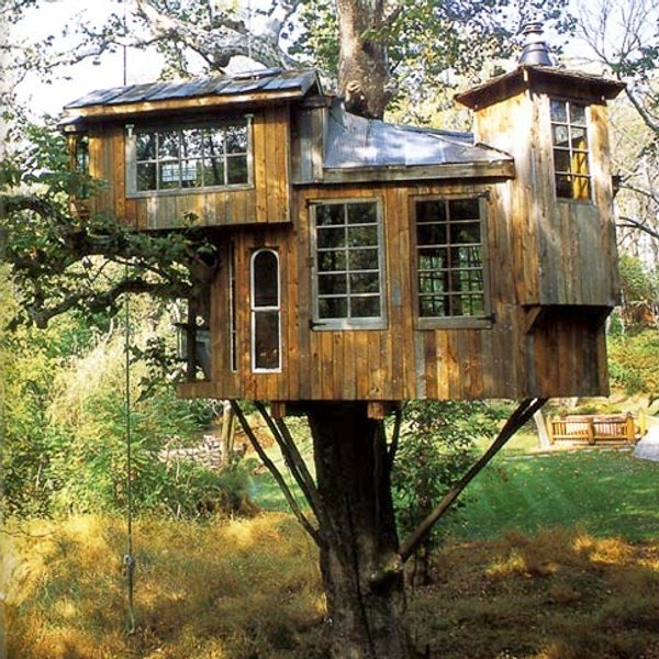 peter-nelson-treehouse (5)