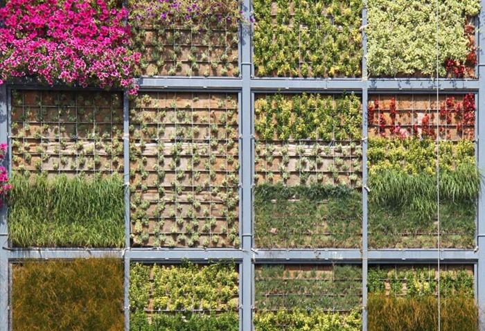 vertical-garden (6)
