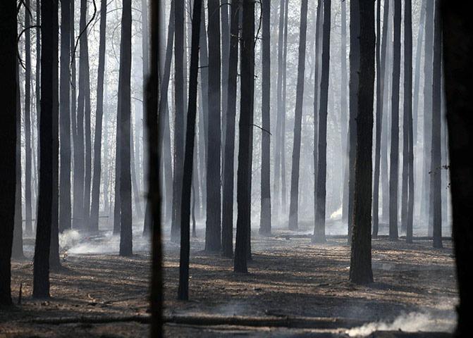 RUSSIA-HEATWAVE-FIRE-20100801-161742.jpg