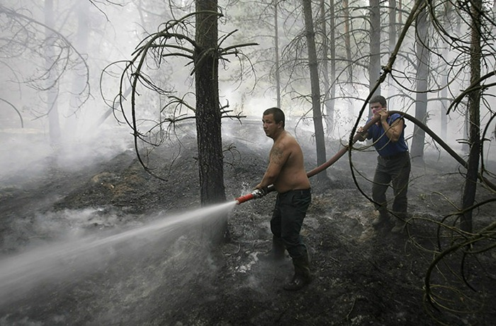 russia-forest-fire (45)