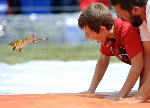 frog-jump-festival (2)