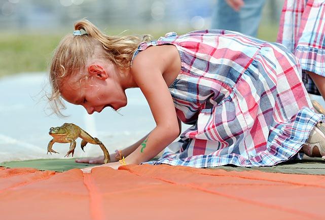 frog-jump-festival (9)