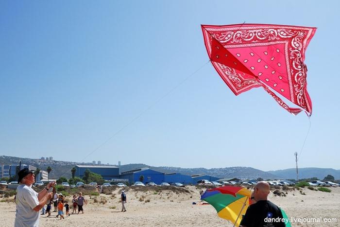 japanese-kite-festival (8)
