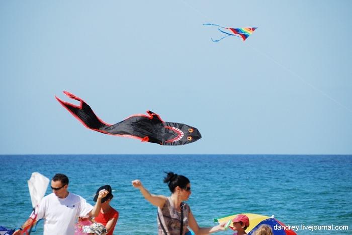 japanese-kite-festival (9)