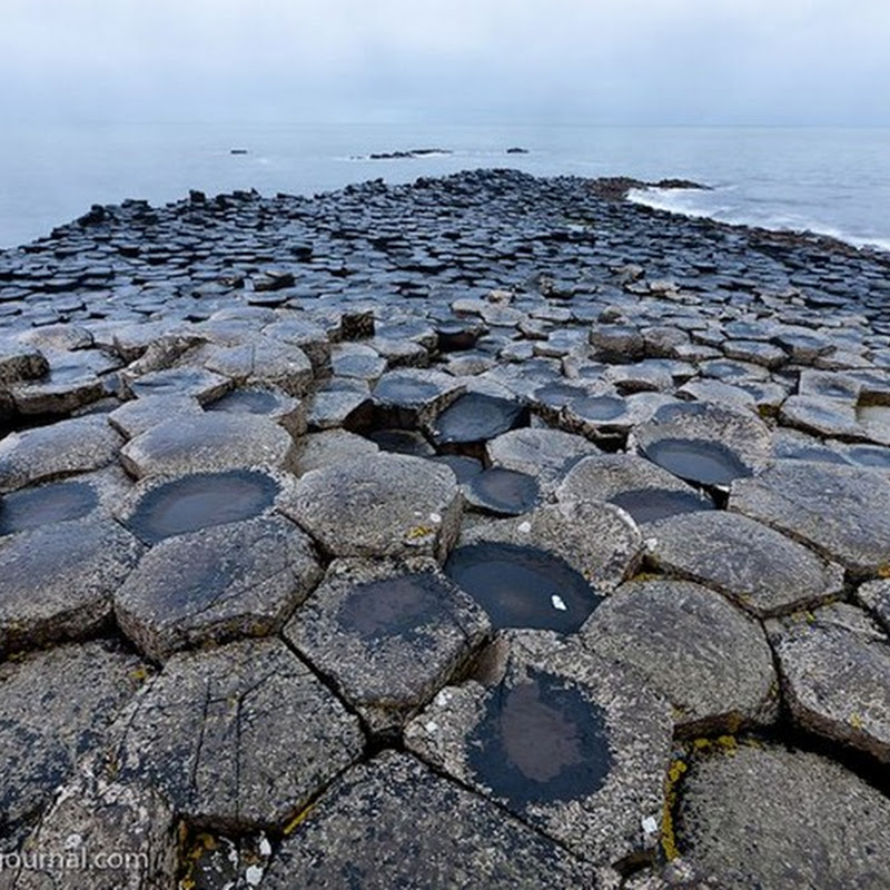 Curious Rock Formation of Giant's Causeway in Ireland