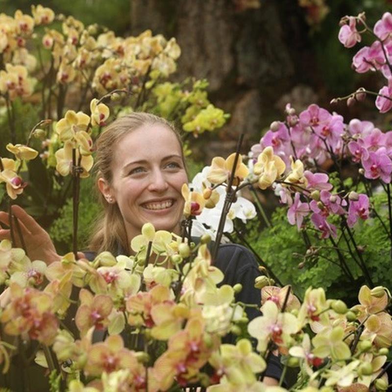 Tropical Extravaganza Festival at Kew Gardens