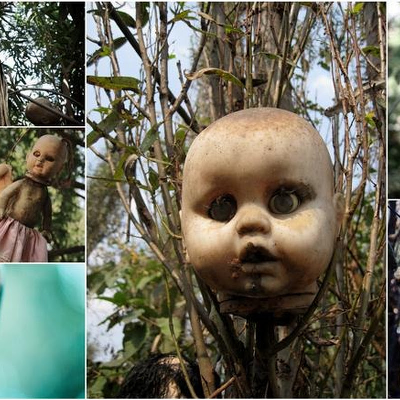 Island Of The Dolls: Mexico's Creepiest Place