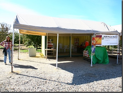 fruit stand web