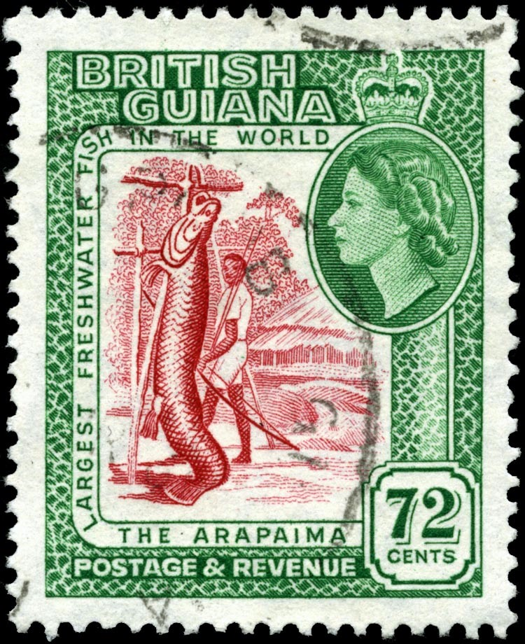timbre de la Guyane Britannique