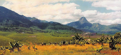 The view of imposing Mount Muresse in northern Mozambique