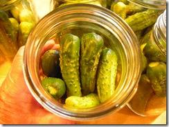 pickles 020
