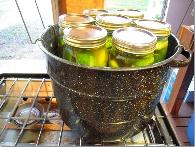 pickles 024