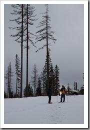 Snowshoeing-46
