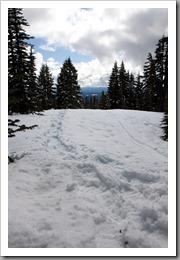 Mt Hood Snowshoeing-52