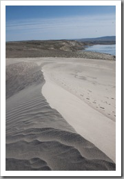 White Bluffs Hike-275
