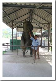 20090819_vietnam_0076