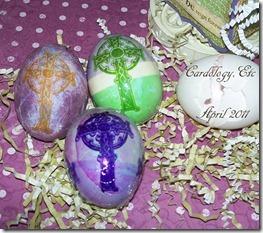 Eggs wms 2011 jdg