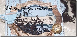 Shaker box 05.11.11