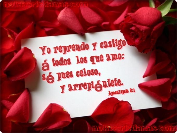 Versículo del día