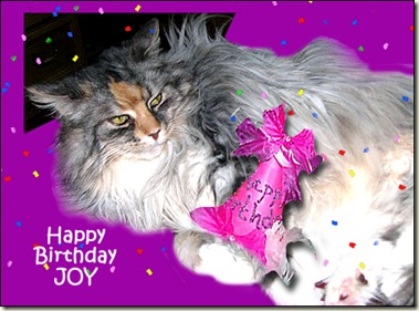 Happy Birthday Joy FandF