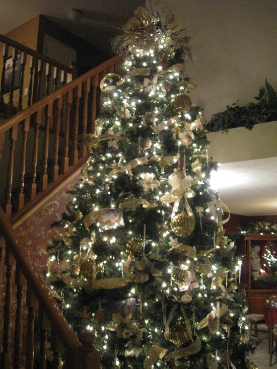 this is the 3rd year we have put up this tree and i think i finally have enough ornaments this year it was all in cream and gold with bits of silver - 12 Ft Christmas Tree